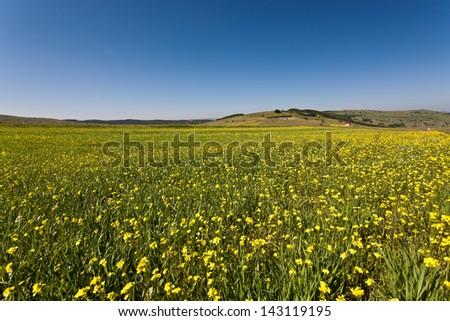 Mountain landscape 3 - stock photo