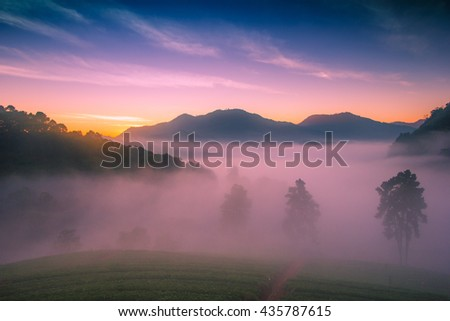 Mountain Landscape and Background,Sunrise in the Morning, Sunrise with clouds.