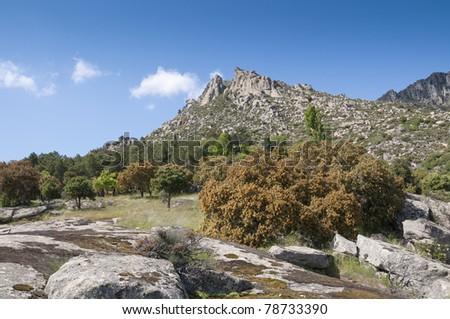 Mountain landscape at Sierra de la Cabrera, Madrid, Spain. It is a granite batholith where geologic forces have created a boulder field of eroded granitic outcrops
