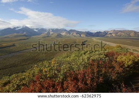 Mountain landscape in Denali National Park, Alaska - stock photo