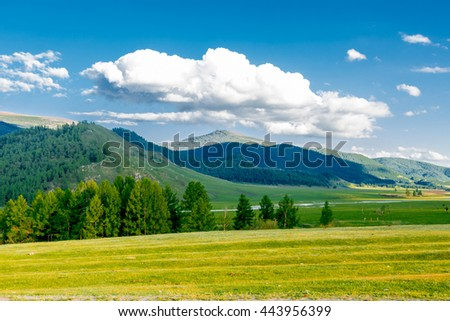 Mountain landscape in early summer in the Altai