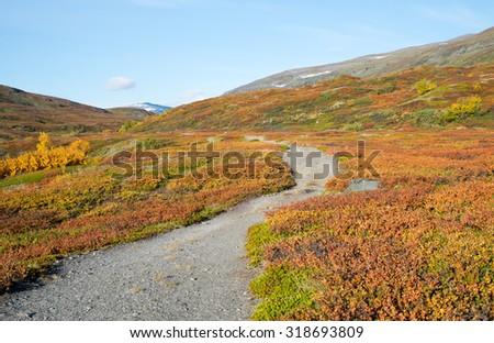 Mountain landscape in northern Sweden. Abisko national park. - stock photo