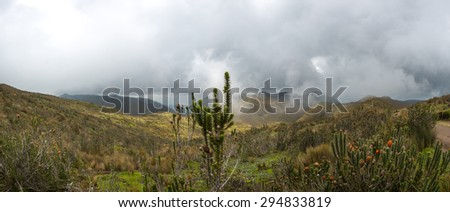 Mountain landscape on the way to the Pichincha volcano. Amazing wildlife and flora of the Andean highlands, at 4000 meters above sea level. Quito. Ecuador - stock photo