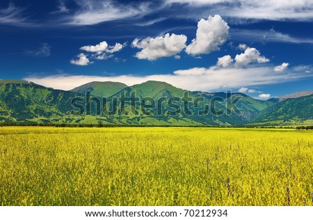 Mountain landscape with blossoming field and blue sky - stock photo
