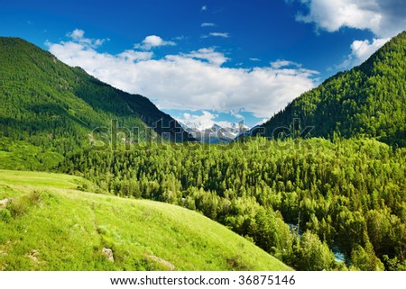 Mountain landscape with forest and blue sky - stock photo
