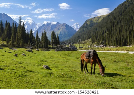 Mountain landscape with grazing horse, Tien Shan, Kyrgyzstan - stock photo