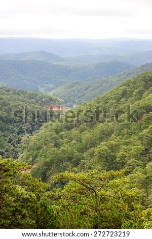 Mountain landscape with green pine trees. - stock photo