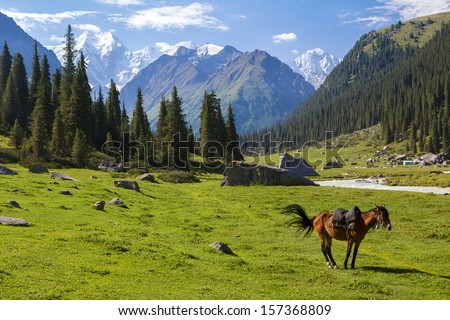 Mountain landscape with horse, Tien Shan, Kyrgyzstan - stock photo