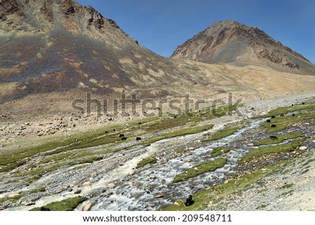 Mountain landscape with river and feeding yaks - stock photo