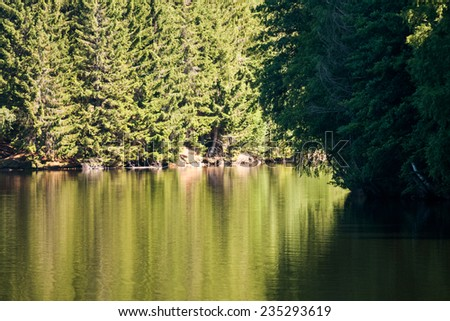 Mountain landscape with river details and water texture - stock photo
