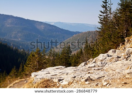 Mountain landscape with rocks and trees in Zakopane - stock photo