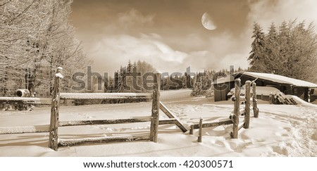 mountain landscape with snow at moonlight in winter