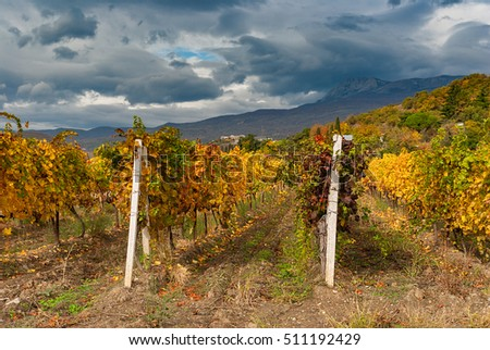 Mountain landscape with vineyards and dark skies at fall season on Crimean peninsula