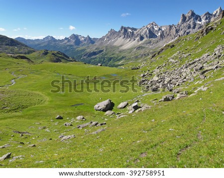 Mountain meadow in the massif of Cerces of the French Alps