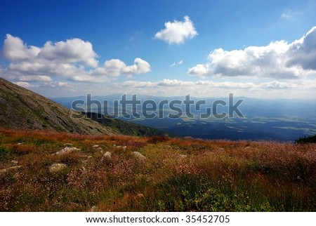 Mountain meadow with grass and flowers in sunlight and clouds on sky