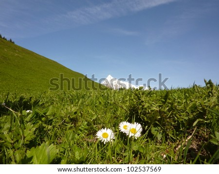 Mountain meadows and peaks - stock photo
