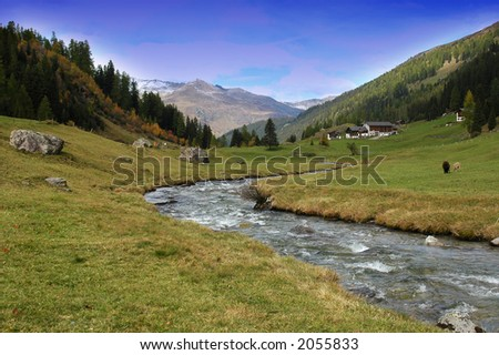 mountain medow - stock photo