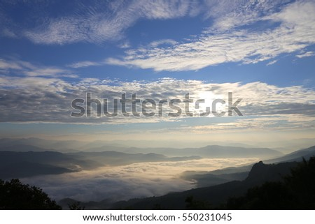 Mountain Mist  of Thailand