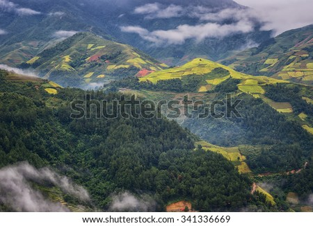 Mountain Mist on rice terraces  Mu Cang Chai, YenBai, Vietnam. Rice fields prepare the harvest at Northwest