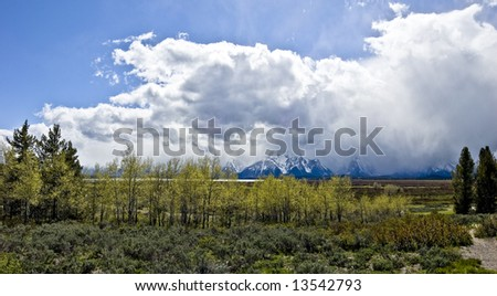 Mountain Panorama with trees and shrubs with blue sky and storm - stock photo