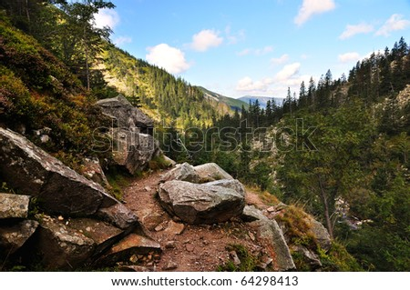 Mountain path in valley in the national park Krkonose - stock photo