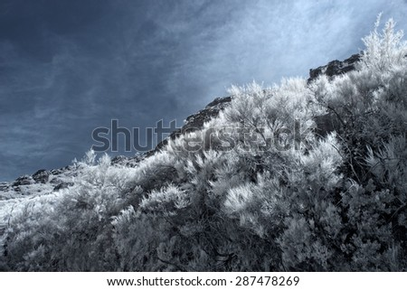 Mountain peak from Peneda Geres National Park, north of Portugal. Used infrared filter. - stock photo