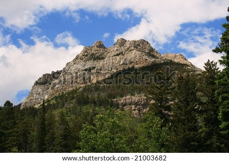 Mountain peak in Waterton National Park, Alberta, Canada; trees in foreground; blue skies/white clouds; early summer - stock photo