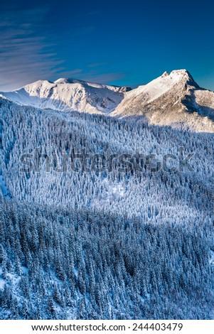 Mountain peaks in the winter sunrise - stock photo