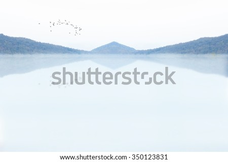 mountain reflected in Lake with bird silhouette