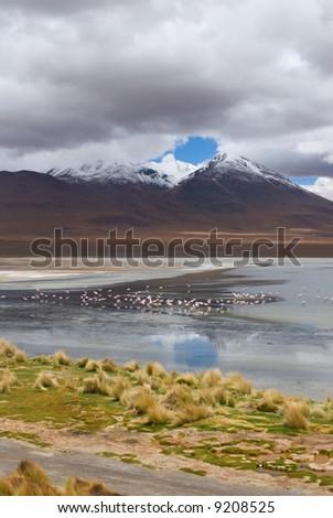 mountain, reflecting in the lake with flamingos, bolivia - stock photo