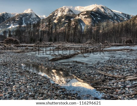 Mountain reflection in a riverside pool of dark unsaturated image with leafless trees - stock photo