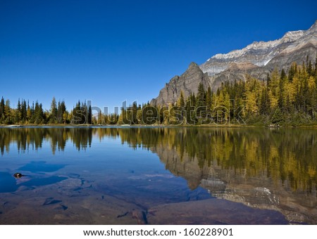 Mountain Reflections in Schaeffer Lake near Lake O'hara