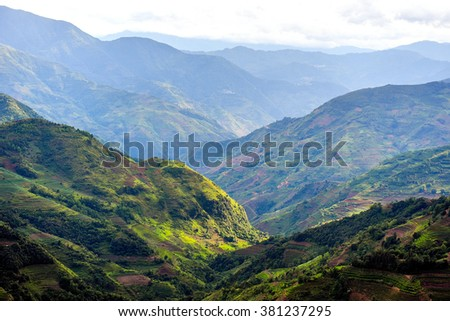 Mountain rice field