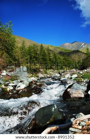 Mountain river, Altai - stock photo