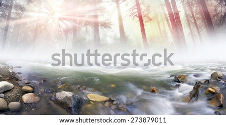 Mountain River at sunrise in a beautiful misty forest after a storm, with silky waves among the wet stones photographed long exposure on the background of the old forests of wild trees