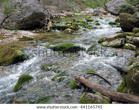 Mountain river flowing among mossy stones in the forest