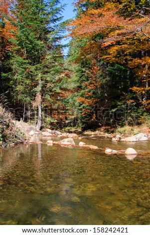 Mountain river. Gravel with colorful beech and maple leaves. Fresh green mossy stones and boulders on river bank after rainy day. - stock photo