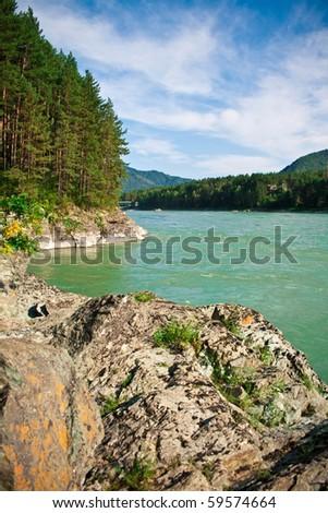 Mountain river in forest, Altai, Russia - stock photo