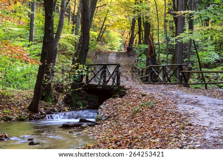 Mountain river in forest, autumn landscape in Hungary - stock photo