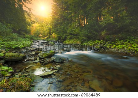 mountain river. misty morning - stock photo