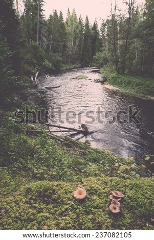Mountain river with Flowing Water Stream and sandstone cliffs - retro, vintage style look - stock photo