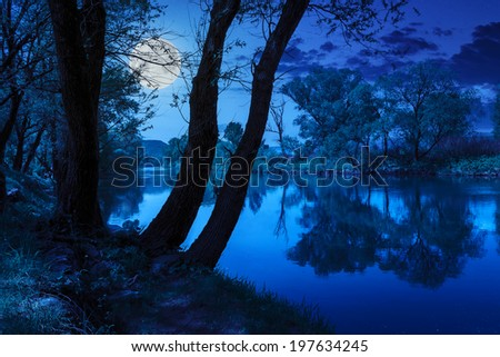 mountain river with stones and grass in the forest near the mountain at night in moon light - stock photo