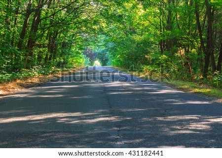 Mountain road at summer in Slovenia,Europe - stock photo