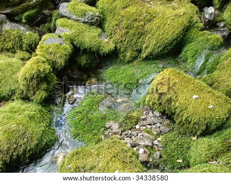 Mountain's river - stock photo