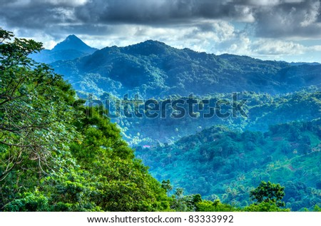Mountain Scene in Edmund Forest St. Lucia