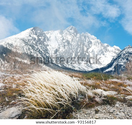 mountain scene with frosted grass