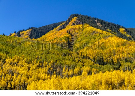 Mountain side filled with fall color of changing Aspen trees and pine trees with clear blue sunny sky - stock photo