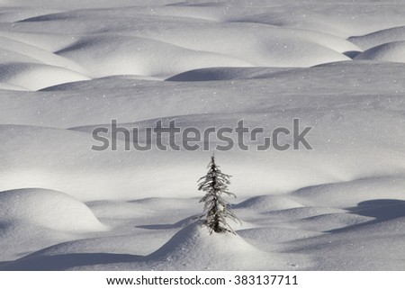 Mountain Snow Moguls Winter Alberta Canada cold - stock photo