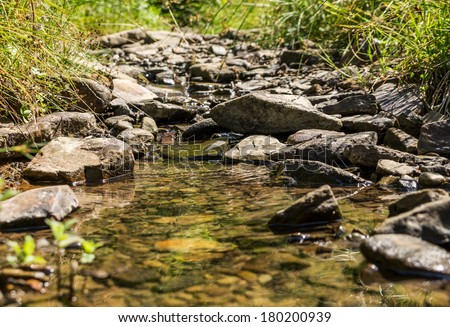 Mountain spring on sunny day