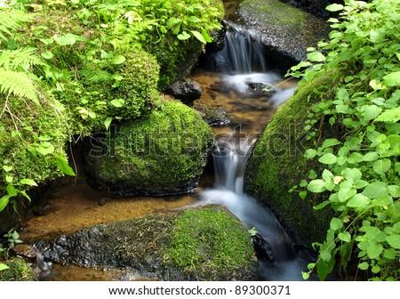 Mountain stream among the mossy stones - stock photo